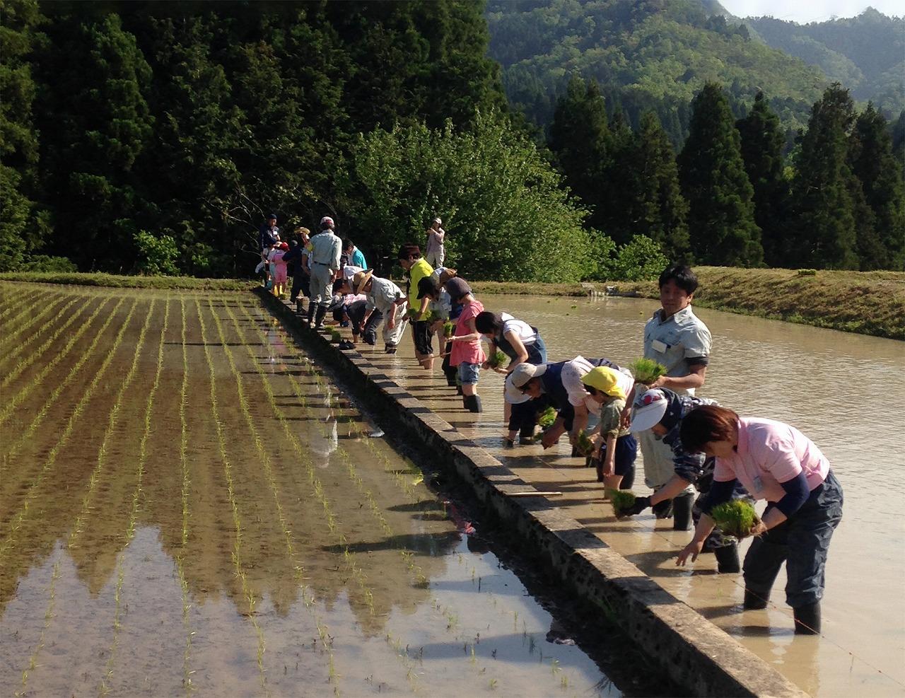 農業イベント|京都府綾部市