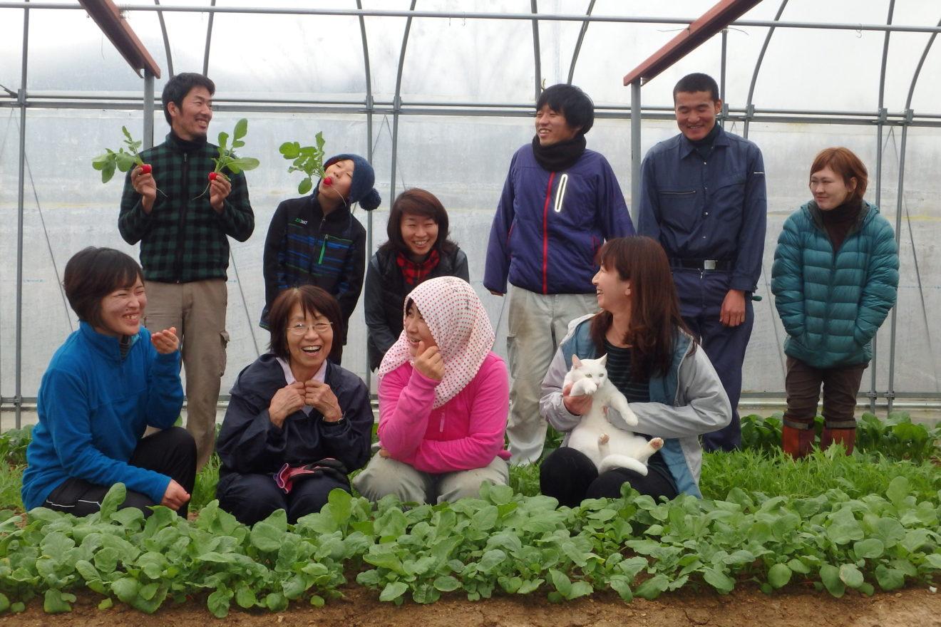 ビニールハウスで農業体験
