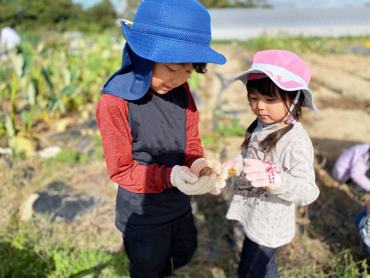 農具レンタル|京都府綾部市|ともときファーム